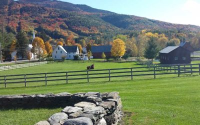 Escape the City and Build a Home in the Country